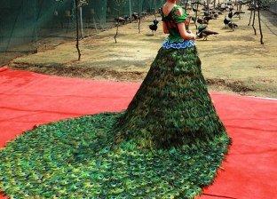 فستان بريش الطاووس