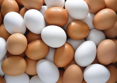 بيض - صورة أرشيفية